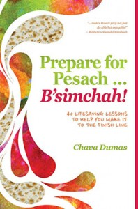 preparation for pesach book SMALL
